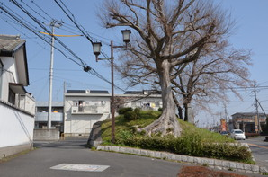 Ishioka_05.jpg