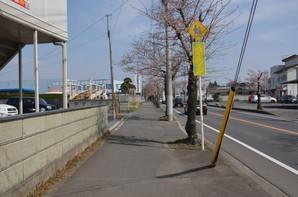 Okunoya_12.jpg