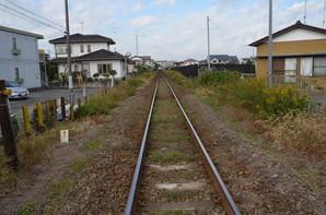 fujishiro_05.jpg