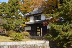 tsuchiura_14.jpg