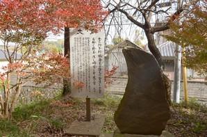 tsuchiura_41.jpg