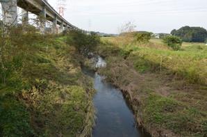 ushiku_03.jpg