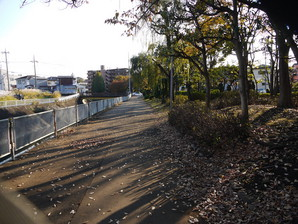 akasaka_46.jpg