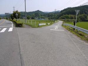 asino_023.jpg