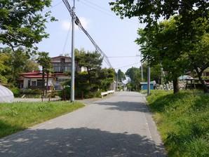 asino_024.jpg