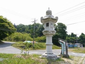 asino_035.jpg