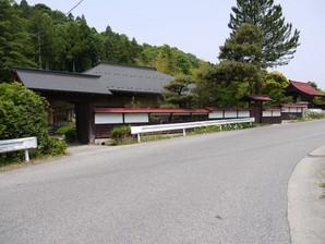 asino_041.jpg