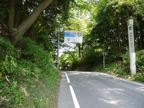 asino_055.jpg