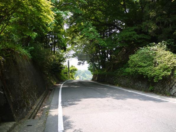 asino_060.jpg
