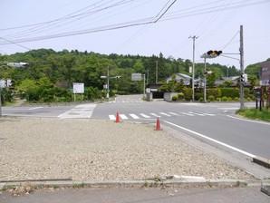 asino_067.jpg