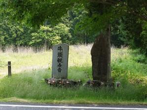 asino_068.jpg