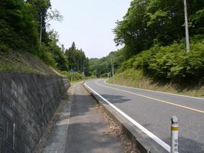 asino_069.jpg