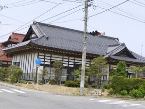 asino_070.jpg