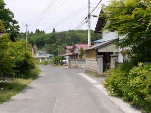 asino_079.jpg