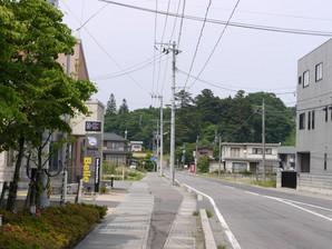 asino_081.jpg