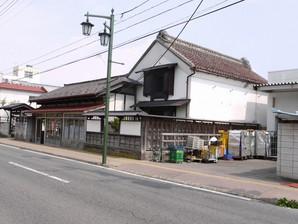 asino_094.jpg