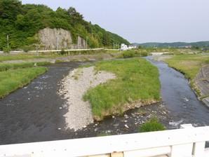 asino_116.jpg