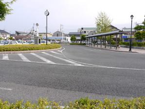 asino_124.jpg
