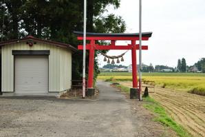 furukawa_12.jpg