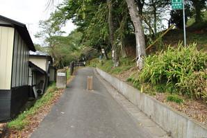 furukawa_20.jpg