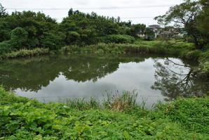 furukawa_30.jpg