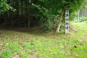 furukawa_50.jpg