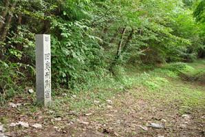furukawa_53.jpg