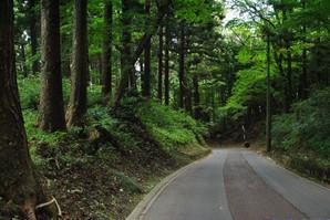 hiraizumi_48.jpg