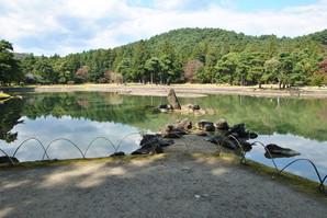 ichinoseki_056.jpg