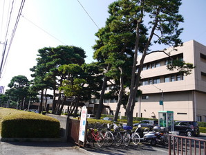 ishibashi_14.jpg