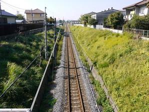 ishibashi_23.jpg