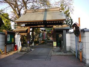 ishibashi_37.jpg
