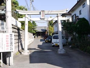 ishibashi_39.jpg