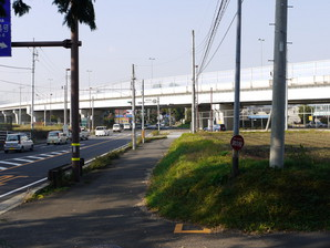 ishibashi_55.jpg