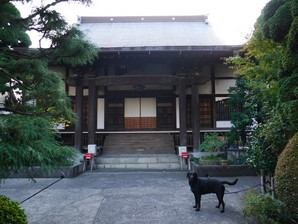 ishibashi_57.jpg