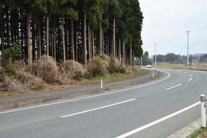 kanegasaki_18.jpg
