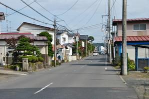 kannari_05.jpg