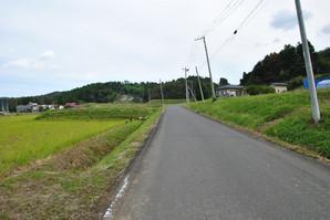 kannari_18.jpg