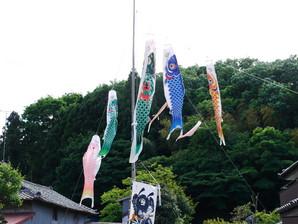 kitsuregawa_24.jpg