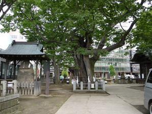 koriyama_05.jpg