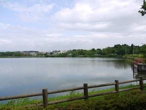 koriyama_18.jpg