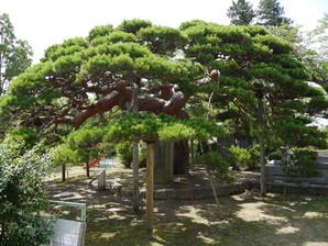 koriyama_32.jpg