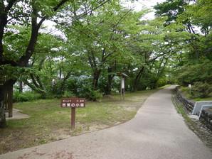 koriyama_36.jpg