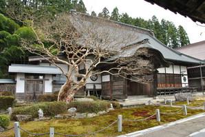 maesawa_05.jpg