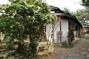 maesawa_34.jpg