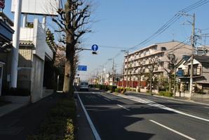 mitsukyo_06.jpg