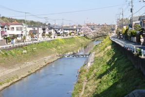 mitsukyo_08.jpg