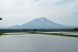 morioka_37.jpg