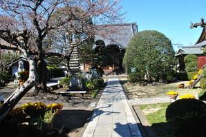nakahara_06.jpg