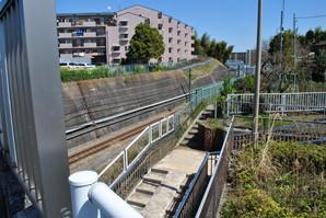 nakahara_28.jpg